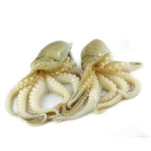 Frischer-Fisch-Online-Oktopus-Pulpo